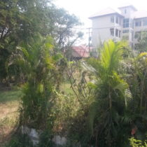 10 rai of Khon Kaen university land