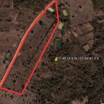 19 Rai of Nong khai farm land